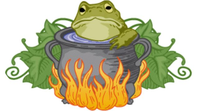 What killed the frog? :: Theory of the boiling frog | Bee-dazzled ...