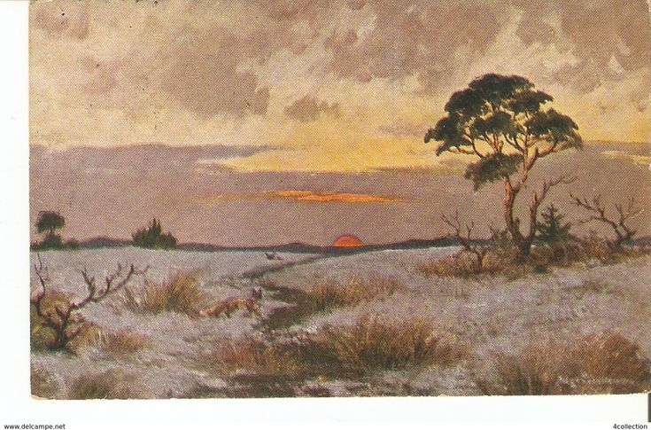 Old Postcard ART Painting Illustration signed by artist - Nature View Sunset print in Germany posted Sweden in 1922