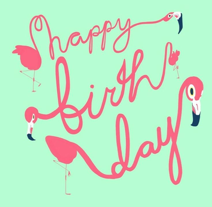 Funny Birthday Wishes Pink: 383 Best Images About Happy ˜� Birthday ˜� On Pinterest