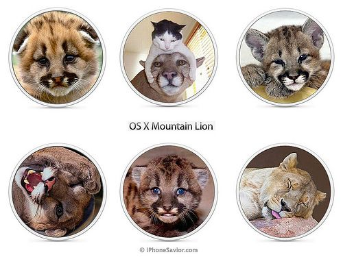 OS X Mountain Lion Images Apple Rejected