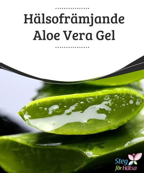 Hälsofrämjande Aloe Vera Gel  Aloe vera är en av de mest #mångsidiga medicinalväxter som #människan #känner till. Det finns många hälsofrämjande #egenskaper hos aloe vera, både för vårt yttre och inre.
