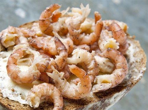 North Sea grey shrimp