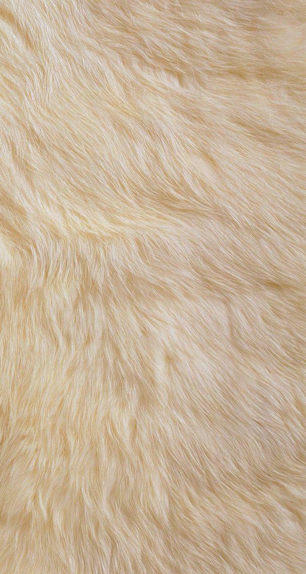 Fur wallpaper wallpapers hd pinterest wallpapers for Fur wallpaper tumblr