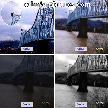 40 best Silver Bridge Collapse images on Pinterest ...