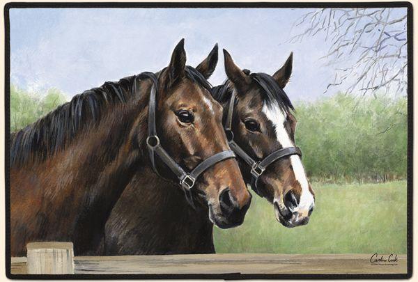 CAROLYN'S HORSES......Carolyn Cook