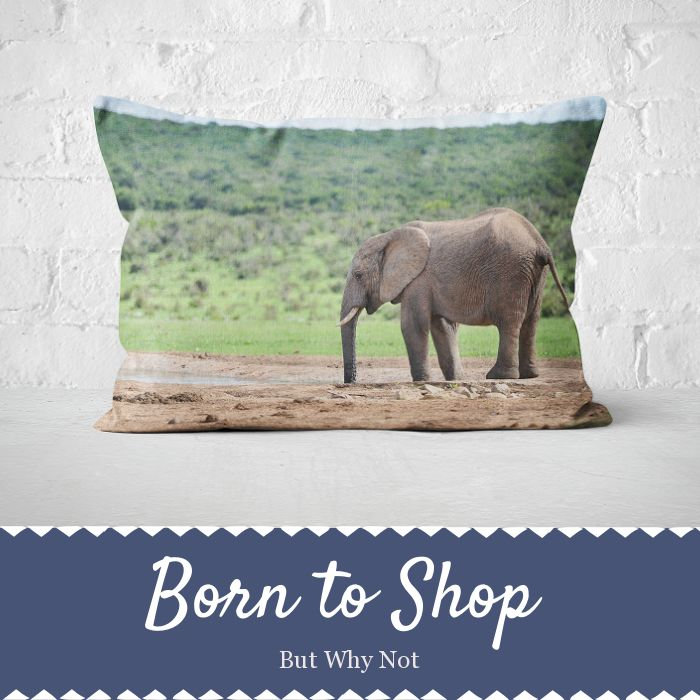 Custom printed products <3  They make the perfect gift for any occasion.Also check out our ready made collections!Order online to sign up for the rewards program to start earning points you can redeem for discount! Order at www.butwhynot.co.za #beautiful #homedecor #musthave #loveit #instacool #shop #shopping #onlineshopping #instashop #instagood #instafollow #photooftheday #picoftheday #love #OTstores #smallbiz