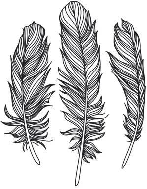 Flighty Feather Trio_image