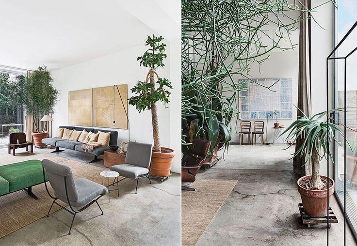 green artistic home - April and mayApril and may