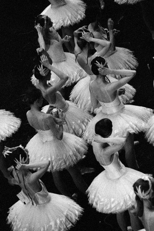 "aurelie-dupont: "" Paris Opera corps de ballet in Nureyev's Swan Lake Photo © Ann Ray """