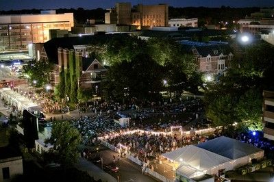 Ann Arbor Summer Festival announces lineup for 2013 Top of the Park music, movies
