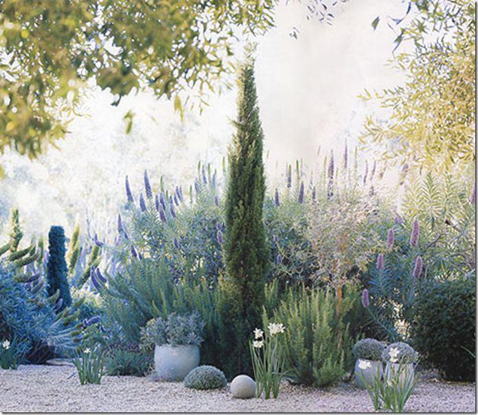 Best 25+ Gravel garden ideas on Pinterest   Sage garden ...