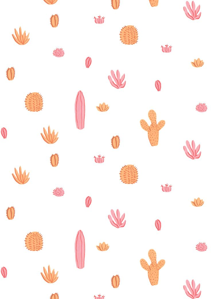 pink & orange cacti / maya bee illustrations.