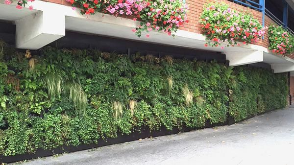 Vertical gardens may look great, but they typically require constant maintenance, automated or otherwise. Urban greening firm Treebox, however, has unveiled a new vertical garden than looks after itself. The Rain Garden uses no power and is sustained solely by rainwater.