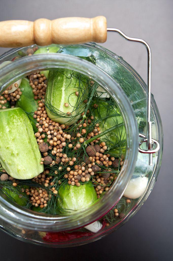 Fermented pickles ingredients in the jar