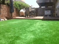 cool-gif-hidden-pool-house