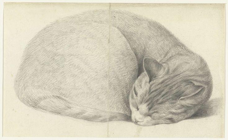 Opgerold liggende, slapende kat, Jean Bernard, c. 1775 - c. 1833