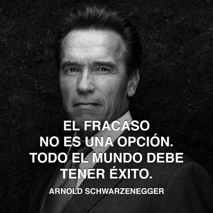 25 Best Failure Quotes On Pinterest: Best 25+ Arnold Schwarzenegger Ideas On Pinterest