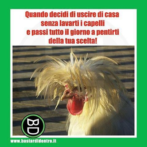Uscire senza lavarsi i #capelli Seguici su youtube/bastardidentro #bastardidentro #shampoo www.bastardidentro.it