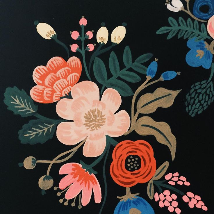 Pattern by Anna Bond of Rifle Paper Co. (via Instagram).