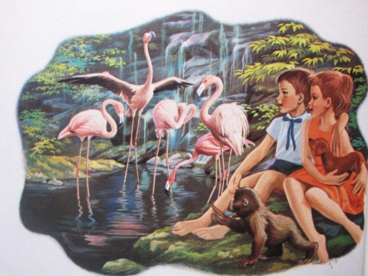 Anita no Jardim Zoológico