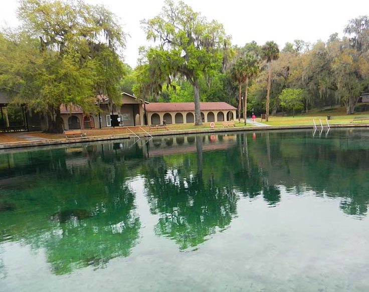 De Leon Springs State Park: The spring and swimming area
