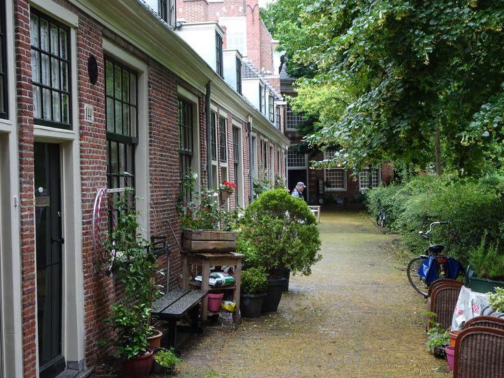 Haarlem - Het Proveniershof is een hofje, gelegen aan de Grote Houtstraat 140, de drukste winkelstraat van de stad. Het Proveniershof heeft wel de vorm van een hof, maar is anders dan 'gewone' hofjes niet gesticht door een gilde, een rijke particulier of een kerk. De naam Proveniershof dankt het hofje aan het feit dat hier tot 1866 een Proveniershuis te vinden was. In het voormalige Proveniershuis zijn nu appartementen gebouwd. foto: G.J. Koppenaal - 1/7/2016.