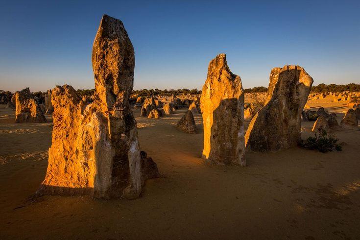 Cervantes, Western Australia, Australien. Medlem: Mcenroe