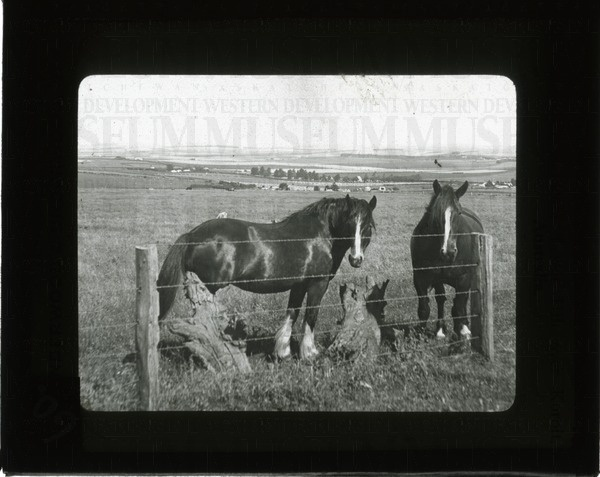 S.E. from Tower Hill over Koroit, Australia | saskhistoryonline.ca