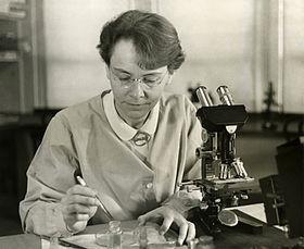 Barbara McClintock – Wikipédia, a enciclopédia livre