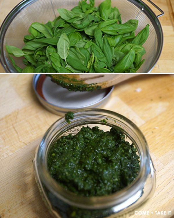 At the Table :: Basil Pesto - COME + TAKE IT