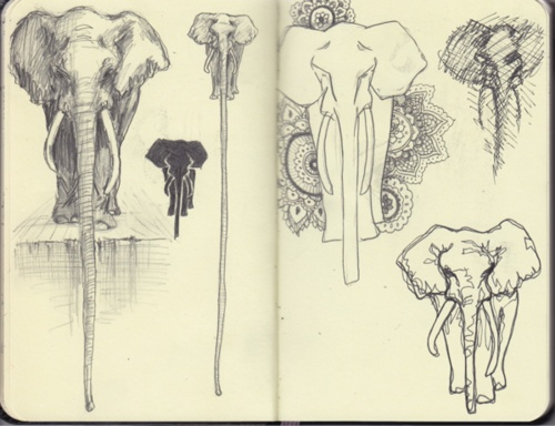 composition #elephants #sketch