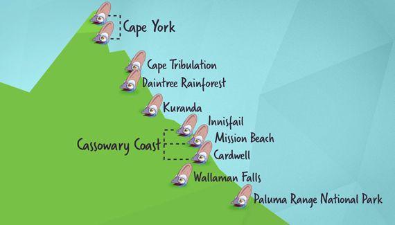 BUCKET LIST: To spot a Cassowary in wild Queensland