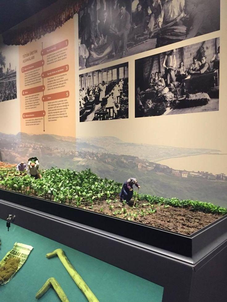 Trabzon MUSEUM.tütüncülük  #diorama #scale #figures #fimo #polimerclay #art #artist #colurs #canon #instagram #trabzon #karadeniz #museum #wood #handmade #miniatures #mini #tabacco #tütün #findik #hazelnut #fındık #trabzonmüzesi #müze #tütün
