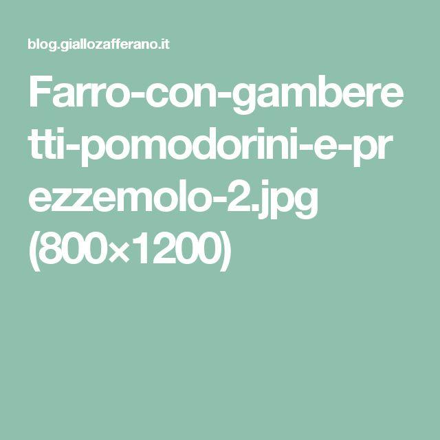 Farro-con-gamberetti-pomodorini-e-prezzemolo-2.jpg (800×1200)
