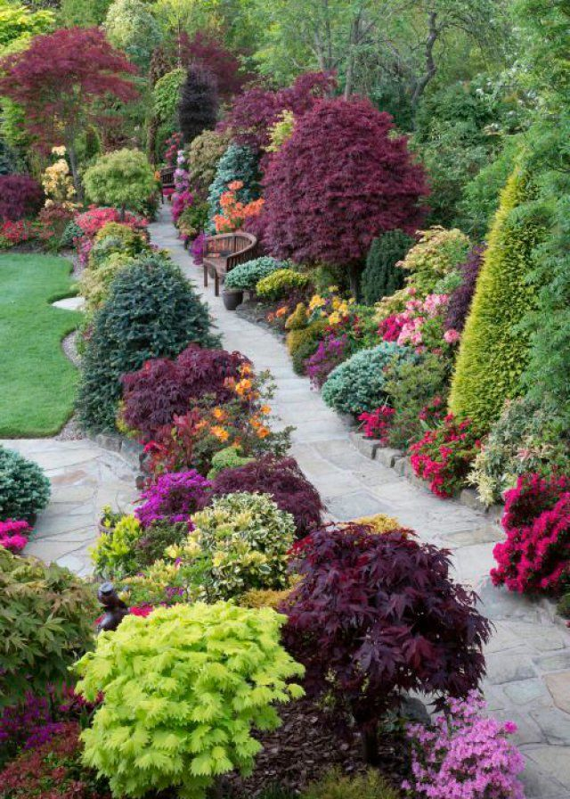 520 best jardin images on Pinterest Landscaping, Gardening and