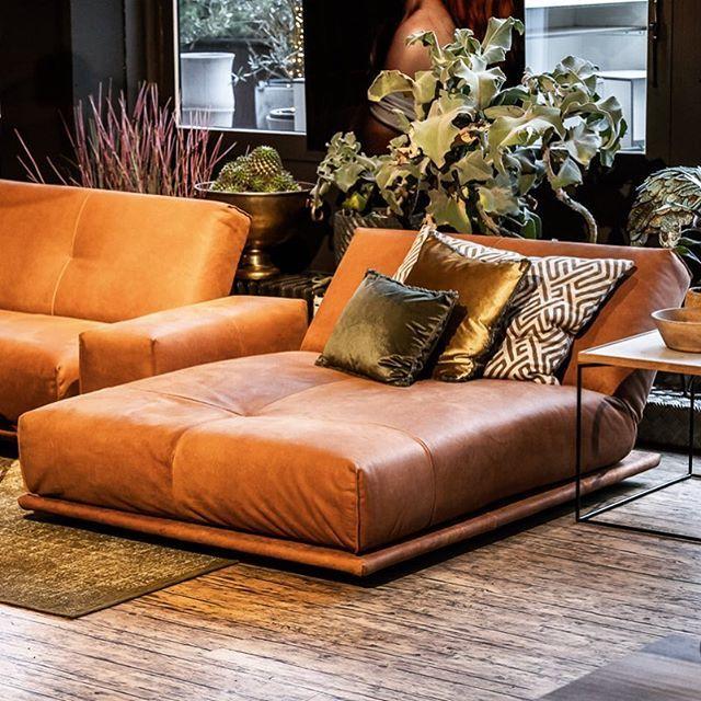 Neu Unser Bullfrogdesign Brandshop Mit Der Vielleicht Grossten Auswahl Der Aussergewohnlichen Lounge Mo Sofa Styling Living Room Color Schemes Furniture Design