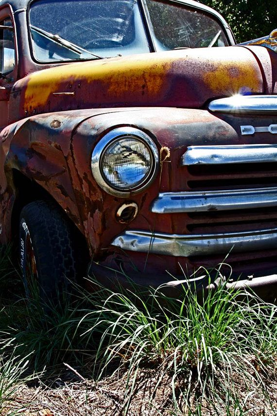 Old Taos Dodge Truck  Vintage Farm Truck  Front by CheyAnneSexton