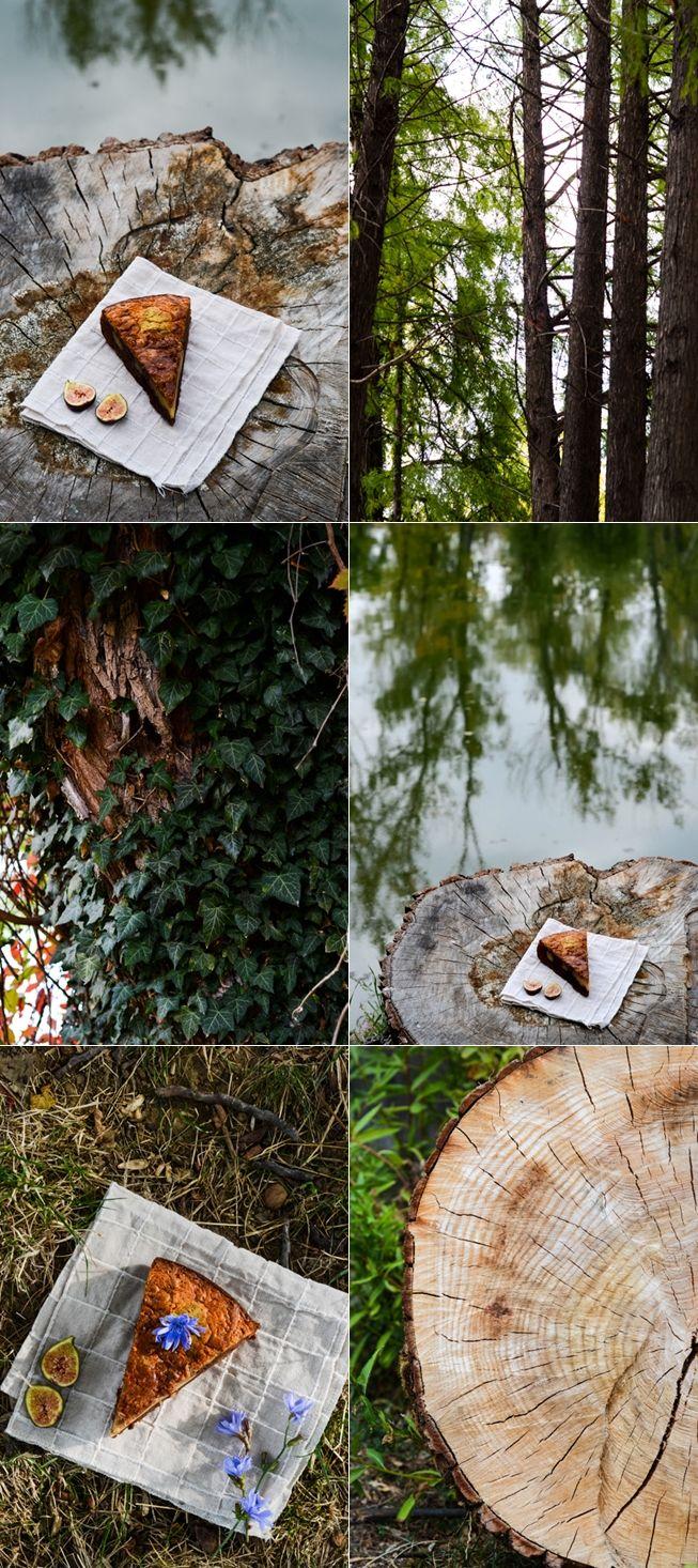 Autumnal culinary landscape