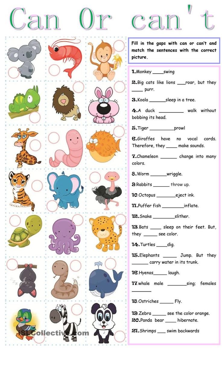 Can or can t | FREE ESL worksheets