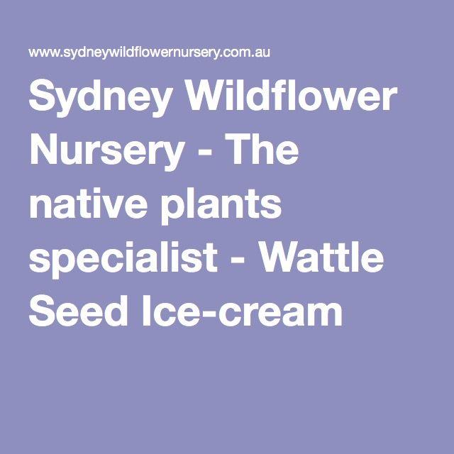 Sydney Wildflower Nursery - The native plants specialist - Wattle Seed Ice-cream