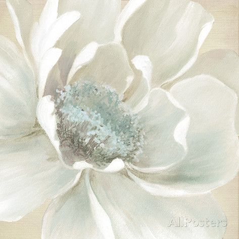 Winter Blooms I Carol Robinson