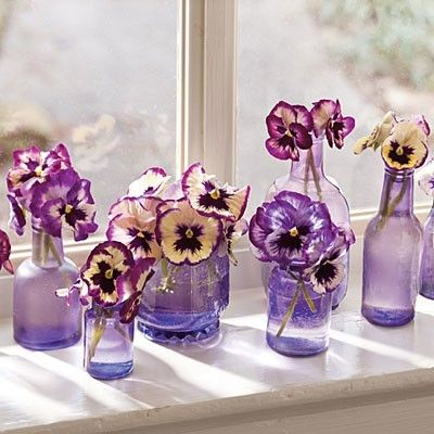 purple pansies in vintage purple bottles