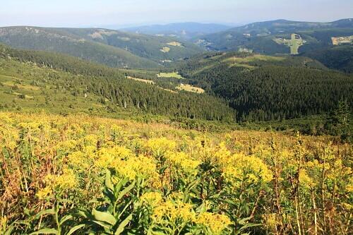 Pec pod Snezkou - Czech Republic