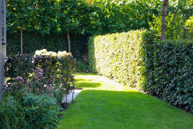 Tuin op het zuiden, Utrecht | Buro Floris | tuin- en landschapsontwerp