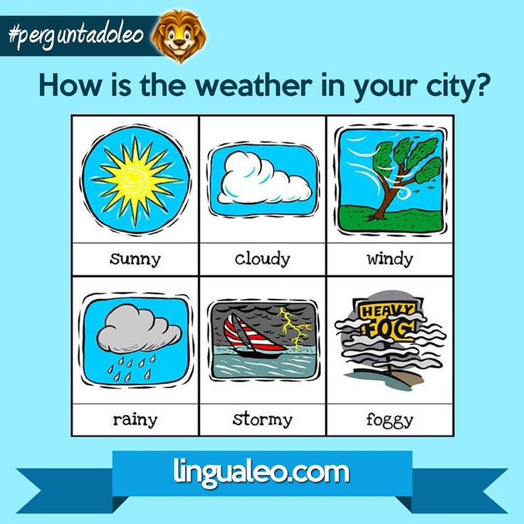 How is the WEATHER in your city?