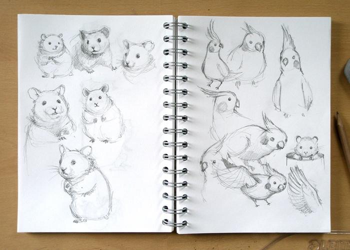 Adelaida - Art, illustration and craft blog of Aleksandra Chabros: Doggie postcard