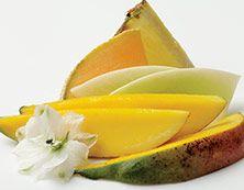 Mangotini Hedelmiä & sitrusta Trooppinen, mehevä mango, johon sekoittuu makeaa melonia ja ripaus ananasta. Kuvittele itsesi Karibian saarelle, lempeästi liehuvan kookospuun alle.