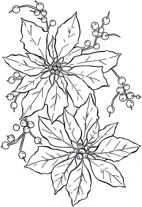 coloring pages of christmas flowers - photo#15