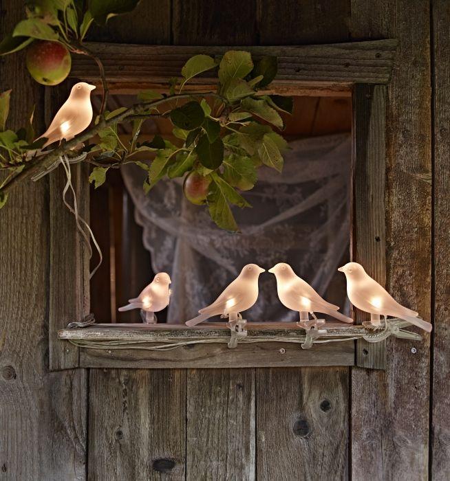 Ze vliegen niet weg, zorgen voor een gezellige sfeer èn ze werken op zonne-energie!