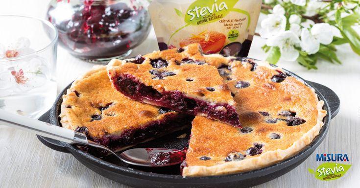 Torta allo yogurt e mirtilli, per una colazione o una merenda deliziosa.  #yogurt #stevia #blueberries #cake